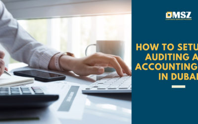 How to set up an accounting and auditing firm in Dubai: