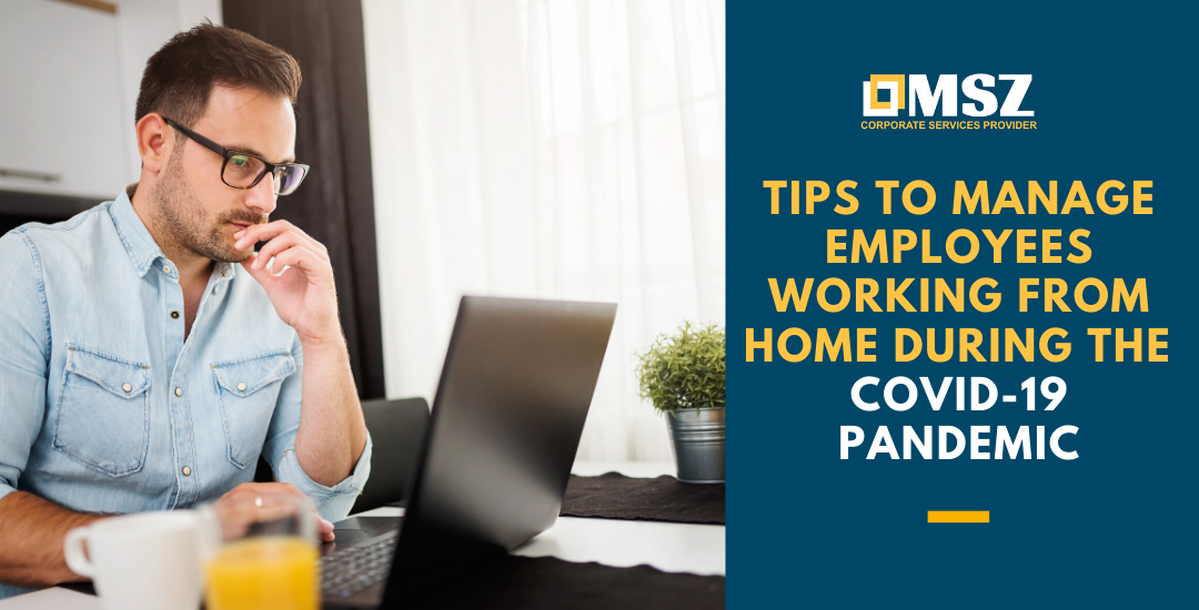 Tips to manage employees working from home during COVID-19