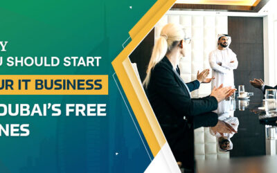 Why You Should Start Your IT Business in Dubai's Free Zones